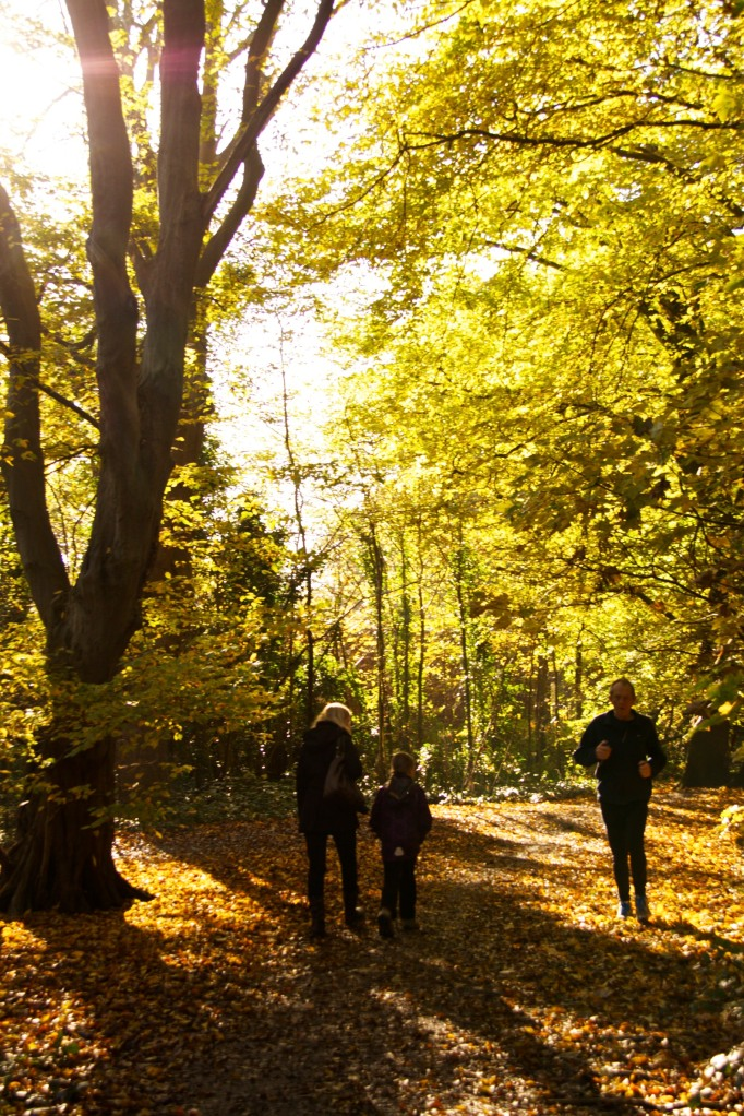 A woman and girl strolling and a man jogging in bright sunshine in autumn woods