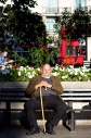 An elderly man with a walking stick sitting on a bench in the sunshine at Marble Arch London